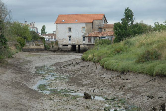 Mornac - moulin à marée (bassin de retenue)